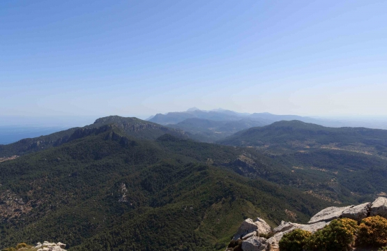 Outdoor excursion with children to the Puig de Galatzó reserve